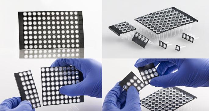 Life Systems Design :: FrameStar® Break-2-Ways PCR 96well plate ...